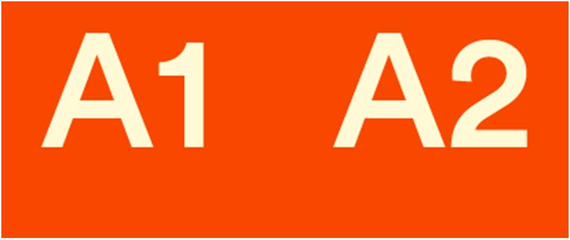 Escola d'idiomes Barcelona, nivell A1 i A2