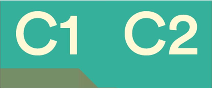 C1 i C2 en acadèmia d'idiomes Sants